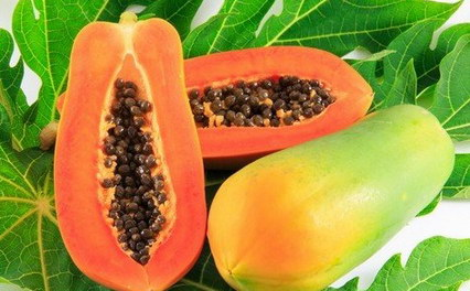 semillas de papaya_resize